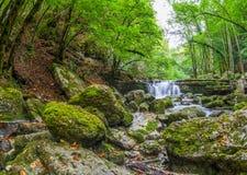 Jura Riverscape, Frankrike dropp Royaltyfria Bilder