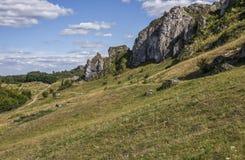 Juralandschaft nahe Olsztyn-Schloss nahe Czestochowa in Polen Lizenzfreies Stockbild