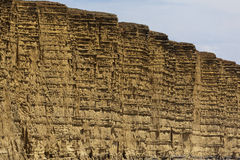 Jurassic coast cliffs Stock Photography