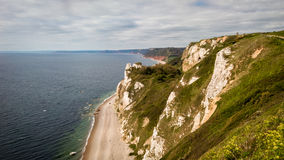 Jurassic Coast in Devon, UK. The jurassic coast between the villages of Beer and Branscombe. Devon, England royalty free stock photos
