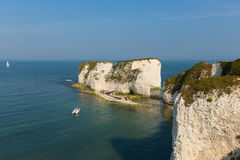 Jurassic Coast Dorset England UK Old Harry Rocks chalk formations including a stack Stock Photos