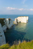 Jurassic Coast Dorset England UK Old Harry Rocks chalk formations including a stack Stock Photography