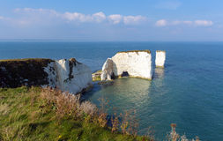 Jurassic Coast Dorset England UK Old Harry Rocks chalk formations including a stack Stock Image