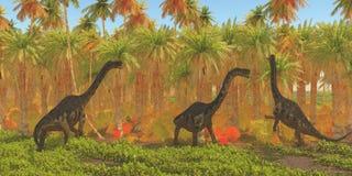 Jurassic Europasaurus Dinosaurs. Europasaurus dinosaur herd munches their way through a jungle habitat in the Jurassic Period of Europe stock illustration