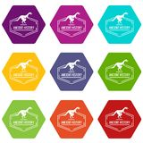 Jurassic icons set 9. Jurassic icons 9 set coloful isolated on white for web vector illustration