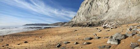 Jurassic kust arkivbilder