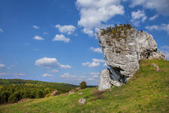 Jurassic limestone rocks - Polish Jura. Royalty Free Stock Image
