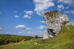 Jurassic limestone rocks - Polish Jura. Royalty Free Stock Image