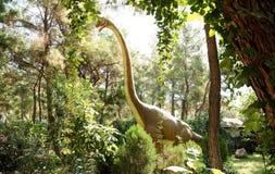Jurassic period /156-145 för brachiosaurus-Sen miljon år sedan Arkivbilder