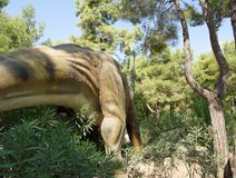 Jurassic period /156-145 för brachiosaurus-Sen miljon år sedan Arkivfoto