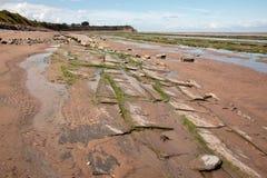 Jurassic period lias stone on Doniford beach, Exmoor, UK Stock Image