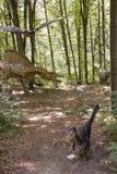 Jurassic world scene. Jurassic period scene at Dino Parc Rasnov, Romania Stock Photography