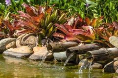 Jurere国际性组织的湖 库存图片