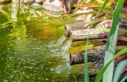 Jurere国际性组织的湖 免版税库存照片