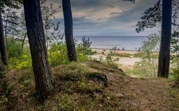 Jurmala Latvia, Sierpień, - 14, 2018: Piaskowata plaża w Jurmala Zdjęcie Royalty Free