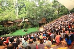 Jurong Bird Park in Singapore. Bird show at the Singpaore Jurong Bird Park Royalty Free Stock Photography