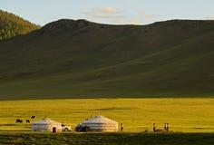 Jurts de uma família do nômada no por do sol Imagens de Stock