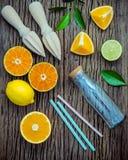 jus avec le presse-fruits et la bouteille en verre Citrons, chaux et orang-outan frais Images libres de droits