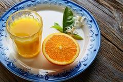 Jus d'orange avec la fleur orange méditerranéenne Photo libre de droits