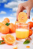 Jus d'orange frais. Images libres de droits