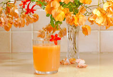 Jus d'orange frais Images stock