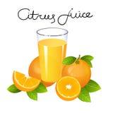 Jus d'orange met de vector van de fruitplak Realistische sappige sinaasappel met bladeren Stock Foto