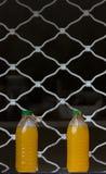 Jus d'orange op een rij Royalty-vrije Stock Afbeelding