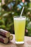 Jus de canne à sucre avec le morceau de canne à sucre sur le fond en bois Photographie stock