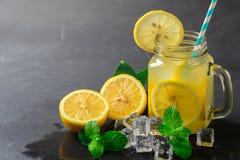 Jus de citrons et citron frais de tranche avec la menthe poivrée photographie stock libre de droits