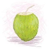 Jus de fruit de noix de coco Photo stock