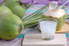 Jus de noix de coco et noix de coco images libres de droits