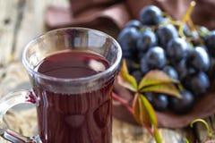 Jus de raisins photographie stock libre de droits