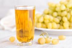 Jus de raisins en glace image libre de droits