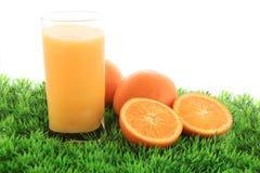 Jus et fruit d'orange sur l'herbe Photographie stock libre de droits