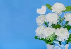 Jusmine, das im Blumenvase auf blauem Hintergrund blüht stockfotos