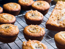 Just baked banana muffins on grill Royalty Free Stock Photos