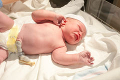 Just-Born Baby Is Crying On A Table Video Footage 80826667 - Megapixl