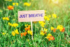 Just breathe signboard. Just breathe on small wooden signboard in the green grass with flowers and sun ray Royalty Free Stock Photography