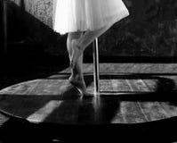 Dancing princess in the moonlight stock photo