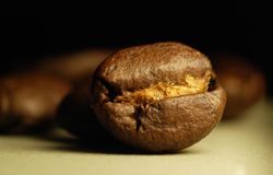 Just a coffee bean Royalty Free Stock Image