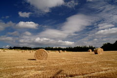 Just after the combine harvester. Hay bales stock photography
