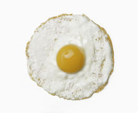 Just egg. Royalty Free Stock Image