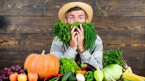 Just from garden. Buy fresh homegrown vegetables. Excellent quality vegetables. Man with beard proud of his harvest. Vegetables wooden background. Farmer with stock photography
