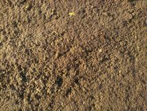Just a ground texture for game developers Royalty Free Stock Photography
