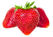 Just juicy strawberries Royalty Free Stock Photo