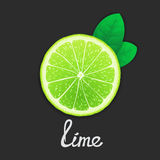Just of lime Stock Images