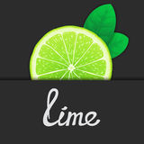 Just of lime Royalty Free Stock Images