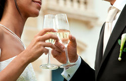 Just married. Couple toasting at the reception Royalty Free Stock Photography