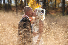 Just Married. Young attractive just married couple in wheat field after ceremony Stock Images