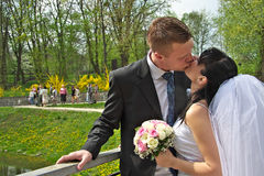 Just married. Couple kissing outside Royalty Free Stock Image